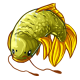 Green_Carp_Item.png