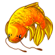 Orange_Carp_Item.png