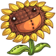 SeedlingSunflower3.png